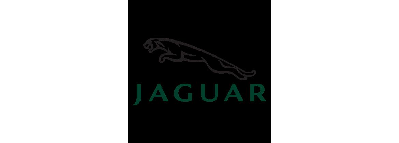 Turbo Jaguar
